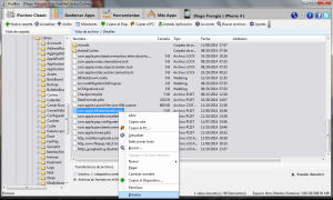 Eliminación de archivos